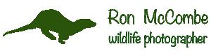 Ron McCombe-Wildlife Photographer